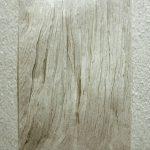 Virginia Mastrogiannaki Untitled From the Remnant series  paper, plexi glass, 2011  30 X 21 cm / Βιργινία Μαστρογιαννάκη Untitled Από τη σειρά Απομεινάρια,  χαρτί, 2011  30 Χ 21 εκ