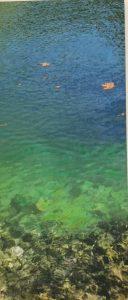 Χρύσα Βέργη, μικτή τεχνική σε καμβά, 110Χ50εκ / Chryssa Verghi, mixed media on canvas, 110X50cm